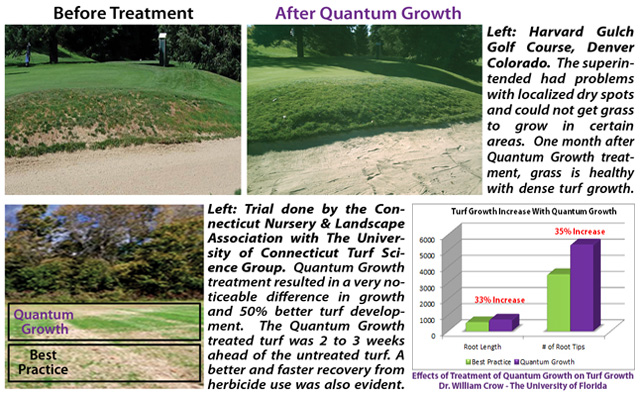 "the emergence and development of the field of turfgrass science ""developmental science is dedicated to examining the biopsychosocial mechanisms that underlie both deviant and normal development this field is not limited to simply describing deviant behavior at a specific age, but rather examines the dynamic interplay of biopsychosocial risk and protective conditions in the course of development over an."